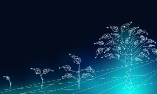 Blockchain Und Nachhaltigkeit